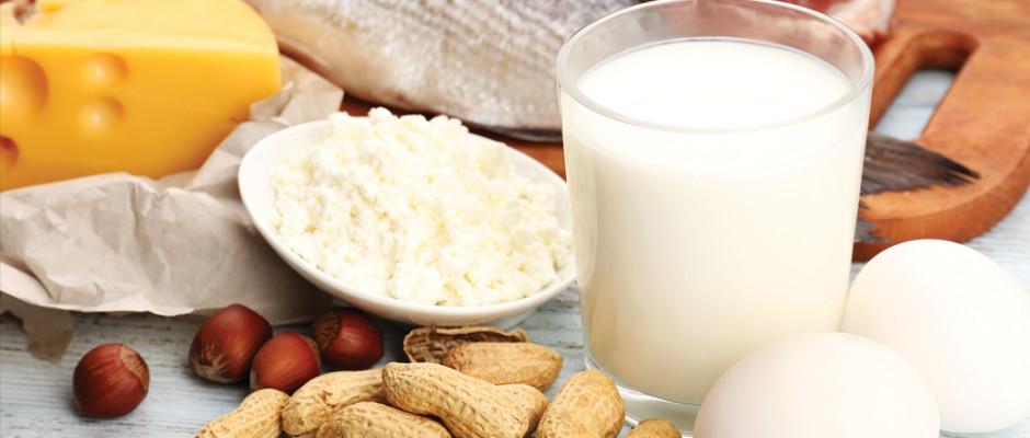 Functional Foods protein food