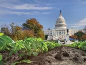 Washington & The Natural Industry