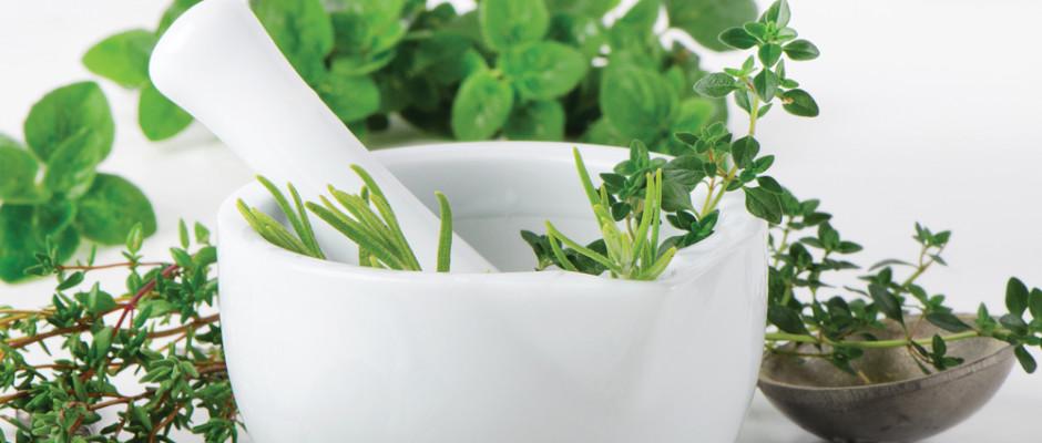 Herbs & Botanicals Bowl